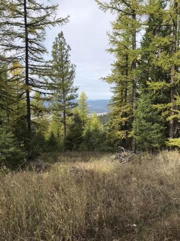 2340 Haywire Gulch, Kalispell, MT 59901 (MLS #21917364) :: Andy O Realty Group