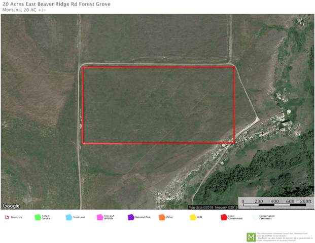 20 Acres E Beaver Ridge Road, Forest Grove, MT 59441 (MLS #21917628) :: Andy O Realty Group