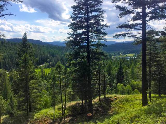 116 Little Mountain Road, Whitefish, MT 59937 (MLS #21918018) :: Performance Real Estate