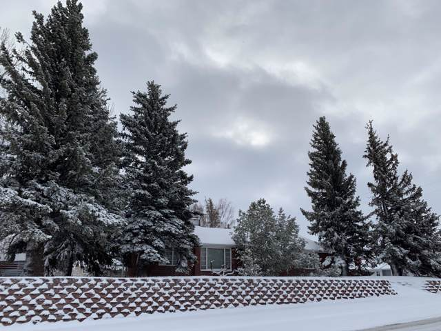 237 6th Avenue SE, Cut Bank, MT 59427 (MLS #21918665) :: Andy O Realty Group