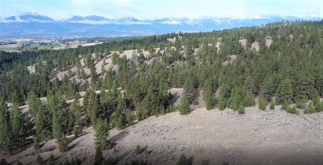 914 Fox Raven Hollow, Corvallis, MT 59828 (MLS #21918804) :: Andy O Realty Group