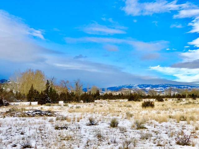 1074 Crow Creek Road, Toston, MT 59643 (MLS #22000157) :: Andy O Realty Group
