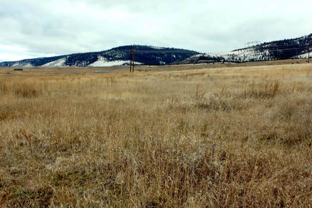 Nhn Left Hand Lane, Elmo, MT 59915 (MLS #22000160) :: Andy O Realty Group