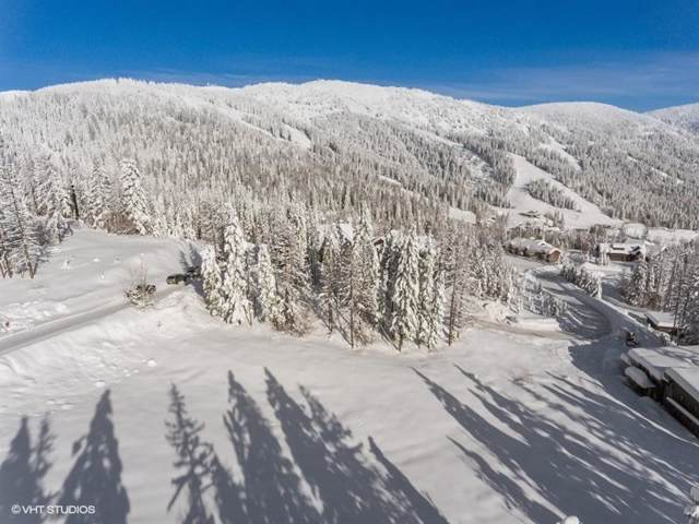 308 Northern Lights Drive, Whitefish, MT 59937 (MLS #22000598) :: Performance Real Estate