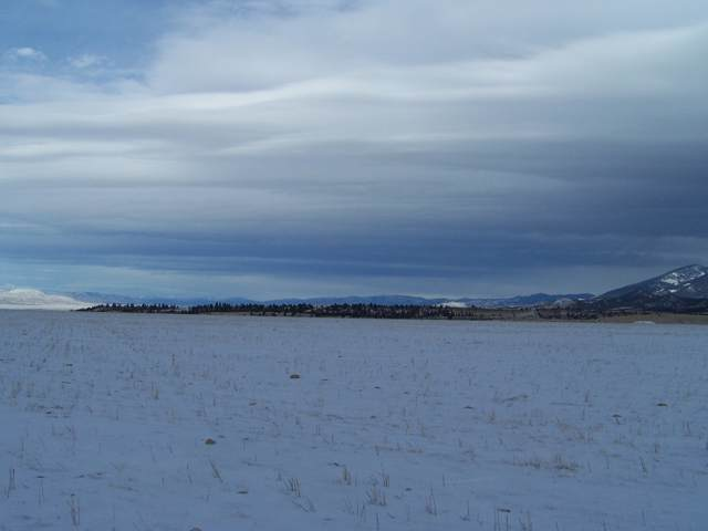 Tbd Big Country Drive, Townsend, MT 59644 (MLS #22000698) :: Andy O Realty Group