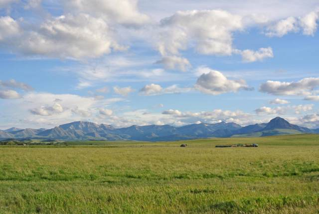 1366 Whoop-Up Trail, Augusta, MT 59410 (MLS #22000799) :: Performance Real Estate