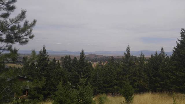 79 Saddle Mountain Drive, Clancy, MT 59634 (MLS #22001217) :: Andy O Realty Group