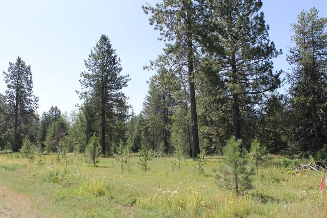 Lot 7 South Shore Drive, Trout Creek, MT 59874 (MLS #22001475) :: Dahlquist Realtors