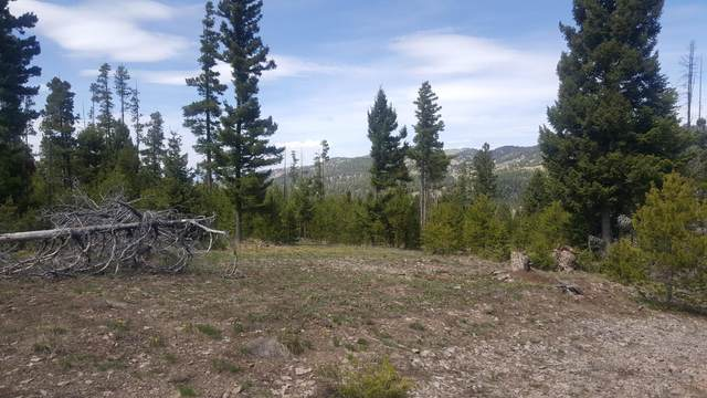 Lot 58 Cat Track Road, Helmville, MT 59843 (MLS #22001856) :: Andy O Realty Group