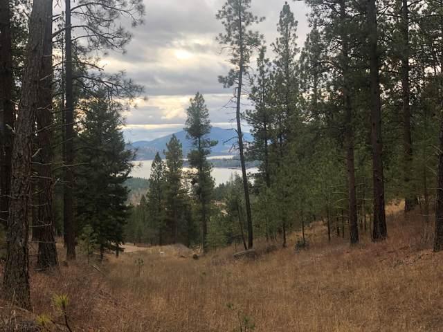 Nhn Elk Crossing-Green Pines Lot1, Rollins, MT 59931 (MLS #22002079) :: Dahlquist Realtors
