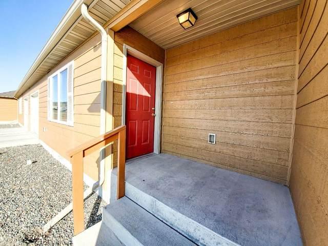8055 Avocet Drive, Helena, MT 59602 (MLS #22002164) :: Performance Real Estate