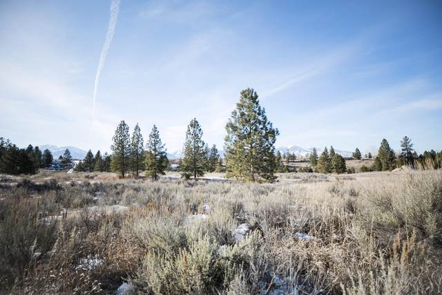 Lot 18a Illinois Bench Road, Stevensville, MT 59870 (MLS #22002305) :: Performance Real Estate