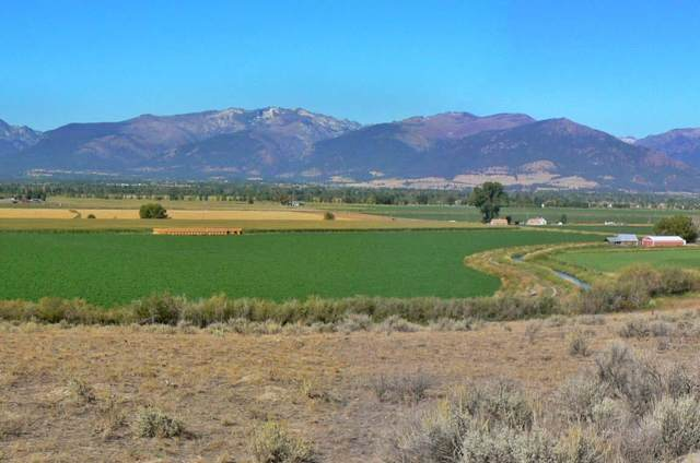 2359 Old West Trail, Corvallis, MT 59828 (MLS #22002384) :: Performance Real Estate