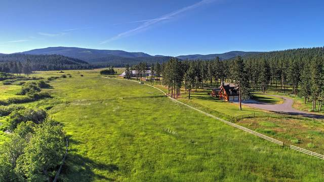 1270 Hole In The Wall Road, Potomac, MT 59823 (MLS #22002523) :: Montana Life Real Estate