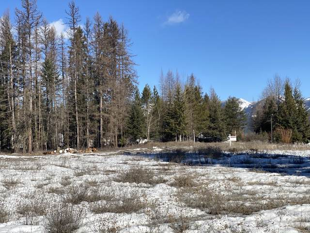 6394 U.S. Hwy 93 S, Whitefish, MT 59937 (MLS #22002707) :: Andy O Realty Group
