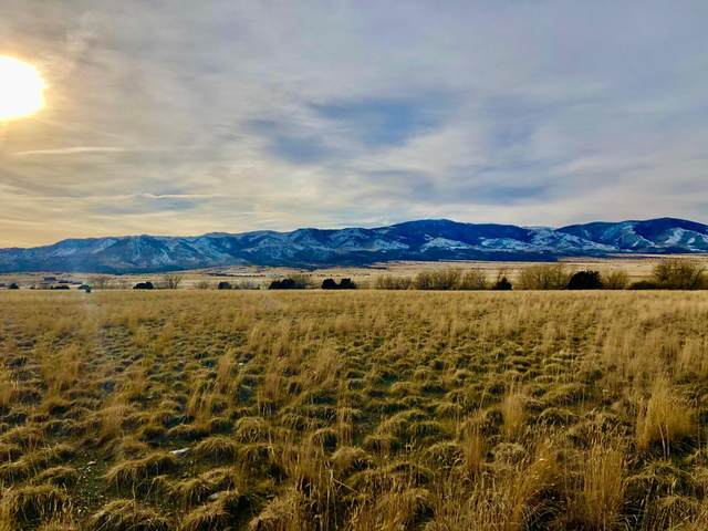 Lot C-2 Spring Street, Townsend, MT 59644 (MLS #22003124) :: Andy O Realty Group