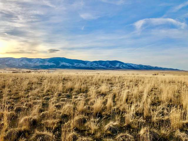 Lot C-5 Spring Street, Townsend, MT 59644 (MLS #22003181) :: Andy O Realty Group