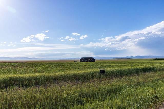 2230 Spring Wheat Loop, East Helena, MT 59635 (MLS #22003283) :: Andy O Realty Group