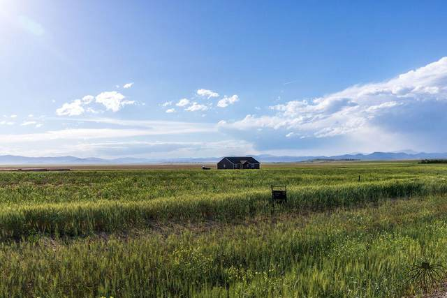2214 Spring Wheat Loop, East Helena, MT 59635 (MLS #22003285) :: Andy O Realty Group