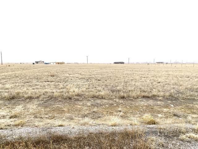 73 Springville Lane, Townsend, MT 59644 (MLS #22003308) :: Andy O Realty Group