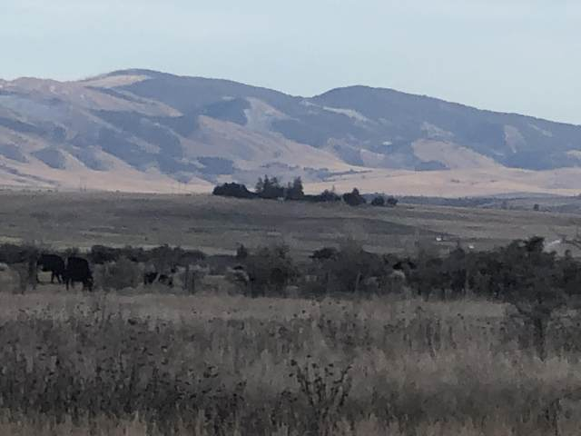 Tbd Harrison Avenue, Townsend, MT 59644 (MLS #22003322) :: Andy O Realty Group