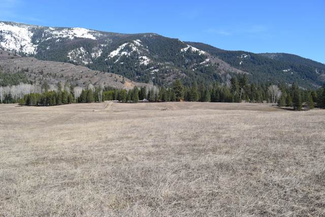 5b Bear Cub Lane, Trout Creek, MT 59874 (MLS #22003452) :: Andy O Realty Group
