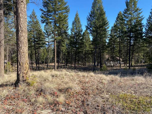 275 Last Chance Gulch, Lakeside, MT 59922 (MLS #22003552) :: Performance Real Estate