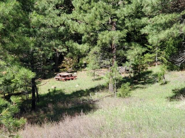 Nhn Upper Andy Creek Lane, Cascade, MT 59421 (MLS #22003856) :: Dahlquist Realtors