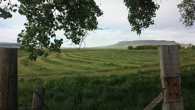 Vacant Simms Cascade Road, Cascade, MT 59421 (MLS #22004011) :: Dahlquist Realtors
