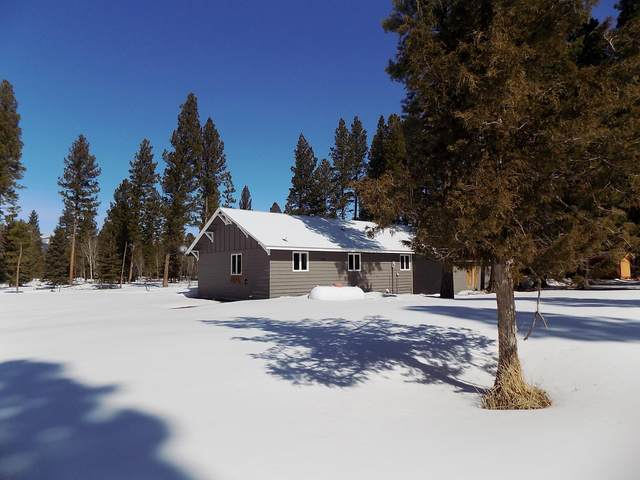 416 N 10th Avenue, Lincoln, MT 59639 (MLS #22004022) :: Andy O Realty Group
