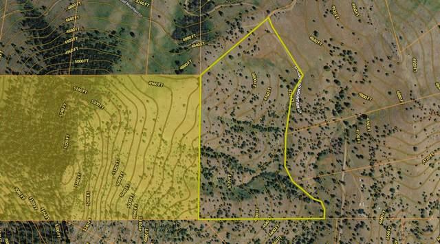 Nhn Sugarloaf Mountain Lane, Cascade, MT 59421 (MLS #22004176) :: Dahlquist Realtors