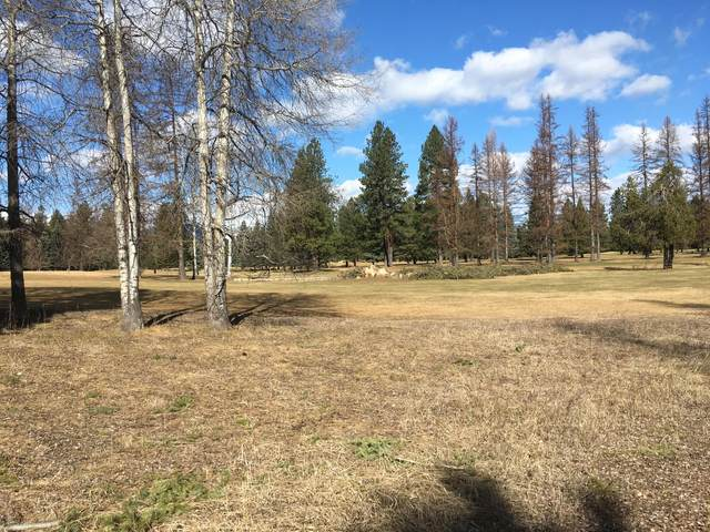 345 Cabinet View Country Club Road, Libby, MT 59923 (MLS #22004180) :: Performance Real Estate
