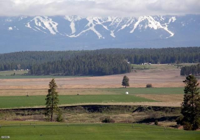 670 Harvest View Lane, Kalispell, MT 59901 (MLS #22004480) :: Dahlquist Realtors