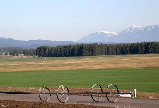 296 Harvest View Lane, Kalispell, MT 59901 (MLS #22004484) :: Dahlquist Realtors
