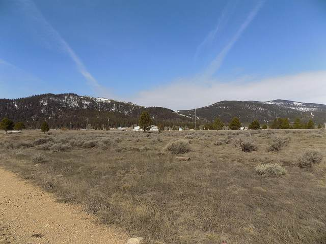 Lts 3 & 4 Salmon Lane, Lincoln, MT 59639 (MLS #22004822) :: Andy O Realty Group