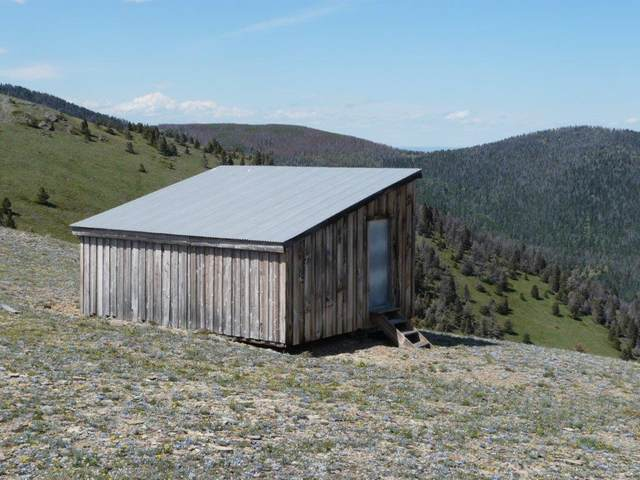 3760 Divide Drive, Wolf Creek, MT 59648 (MLS #22005539) :: Andy O Realty Group