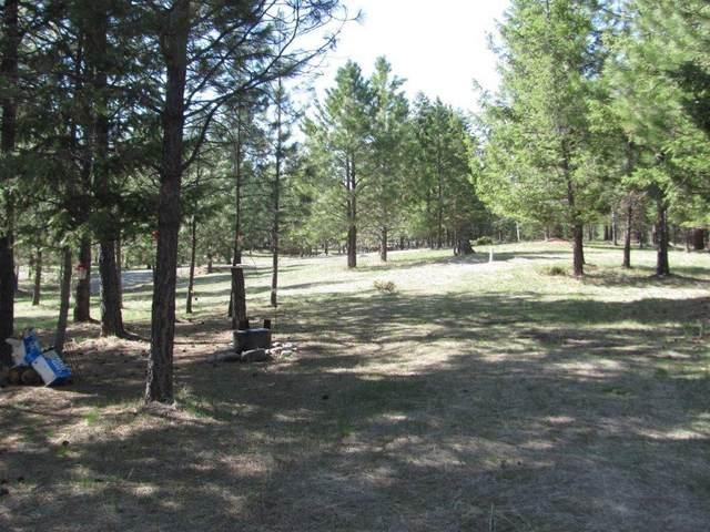 413 Summit Trail, Eureka, MT 59917 (MLS #22005631) :: Dahlquist Realtors