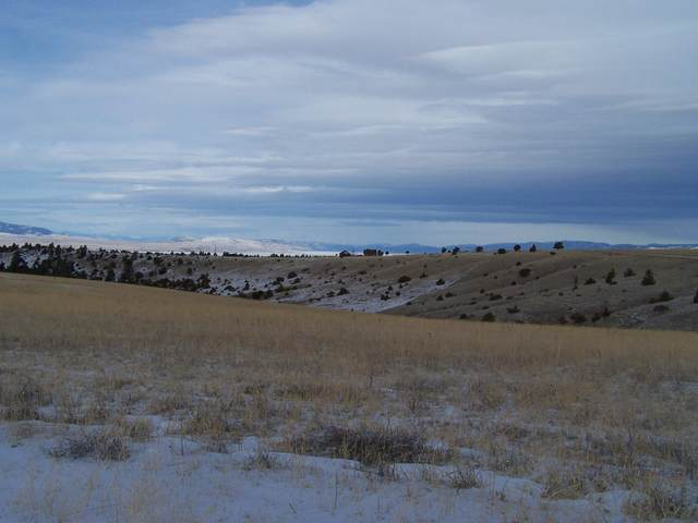 Lot  20 Dimanchi Trail, Townsend, MT 59644 (MLS #22005817) :: Andy O Realty Group