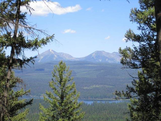 Nhn Beaver Creek Road, Seeley Lake, MT 59868 (MLS #22006155) :: Whitefish Escapes Realty