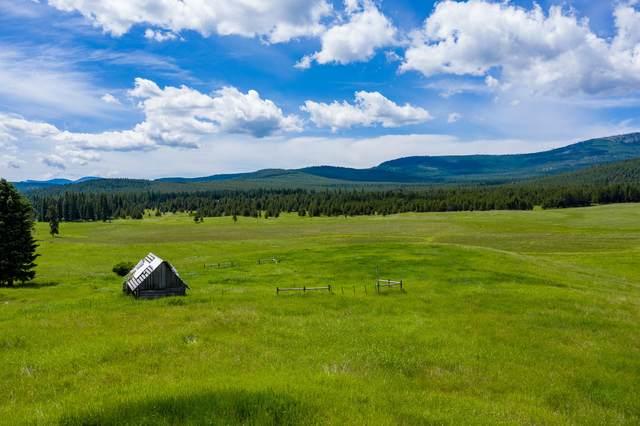 9501 Lost Prairie Road, Marion, MT 59925 (MLS #22006339) :: Performance Real Estate
