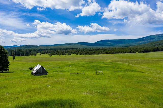 9405 Lost Prairie Road, Marion, MT 59925 (MLS #22006341) :: Performance Real Estate