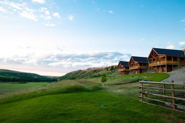 Nhn Gold Strike Ranch, Belt, MT 59412 (MLS #22006984) :: Dahlquist Realtors