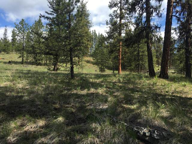 Nhn Mt-37, Libby, MT 59923 (MLS #22007125) :: Andy O Realty Group