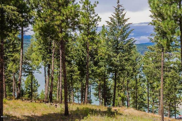 Lot 23 Osprey Court, Rexford, MT 59930 (MLS #22007219) :: Andy O Realty Group