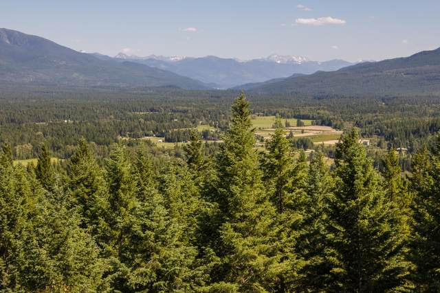 15 Star View Drive, Bigfork, MT 59911 (MLS #22007298) :: Whitefish Escapes Realty