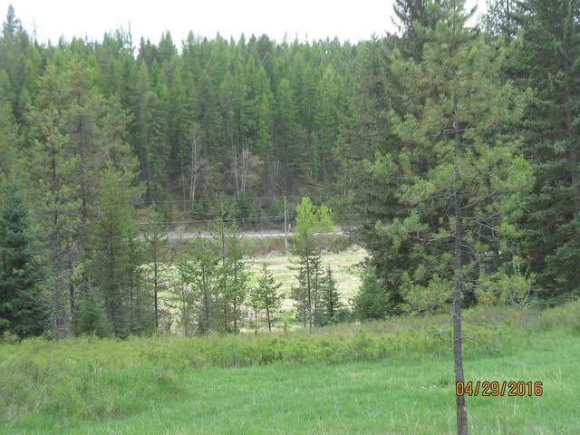 101 Little Mountain Road, Whitefish, MT 59937 (MLS #22007356) :: Whitefish Escapes Realty