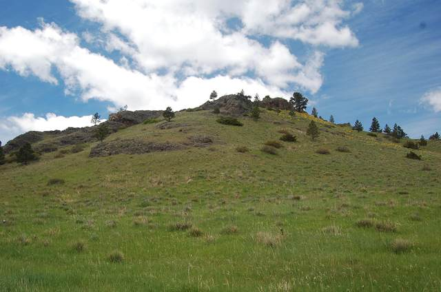 Tbd Eagle Rock, Cascade, MT 59421 (MLS #22007580) :: Performance Real Estate