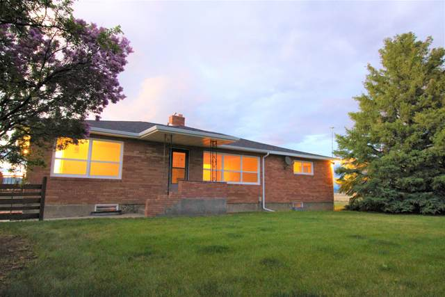 7203 Midnite Drive, Helena, MT 59602 (MLS #22007725) :: Andy O Realty Group