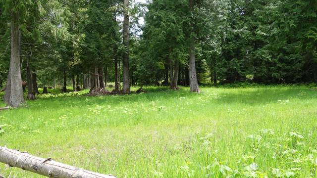 000 Northshore Drive & Westshore, Troy, MT 59935 (MLS #22007751) :: Andy O Realty Group