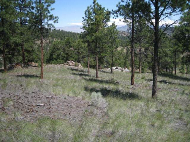 Lot 2 Black Sandy Estates, Helena, MT 59602 (MLS #22007956) :: Whitefish Escapes Realty